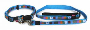 blue-dog-collar-with-lead-bought-separately